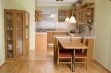 Kuchyně (42)